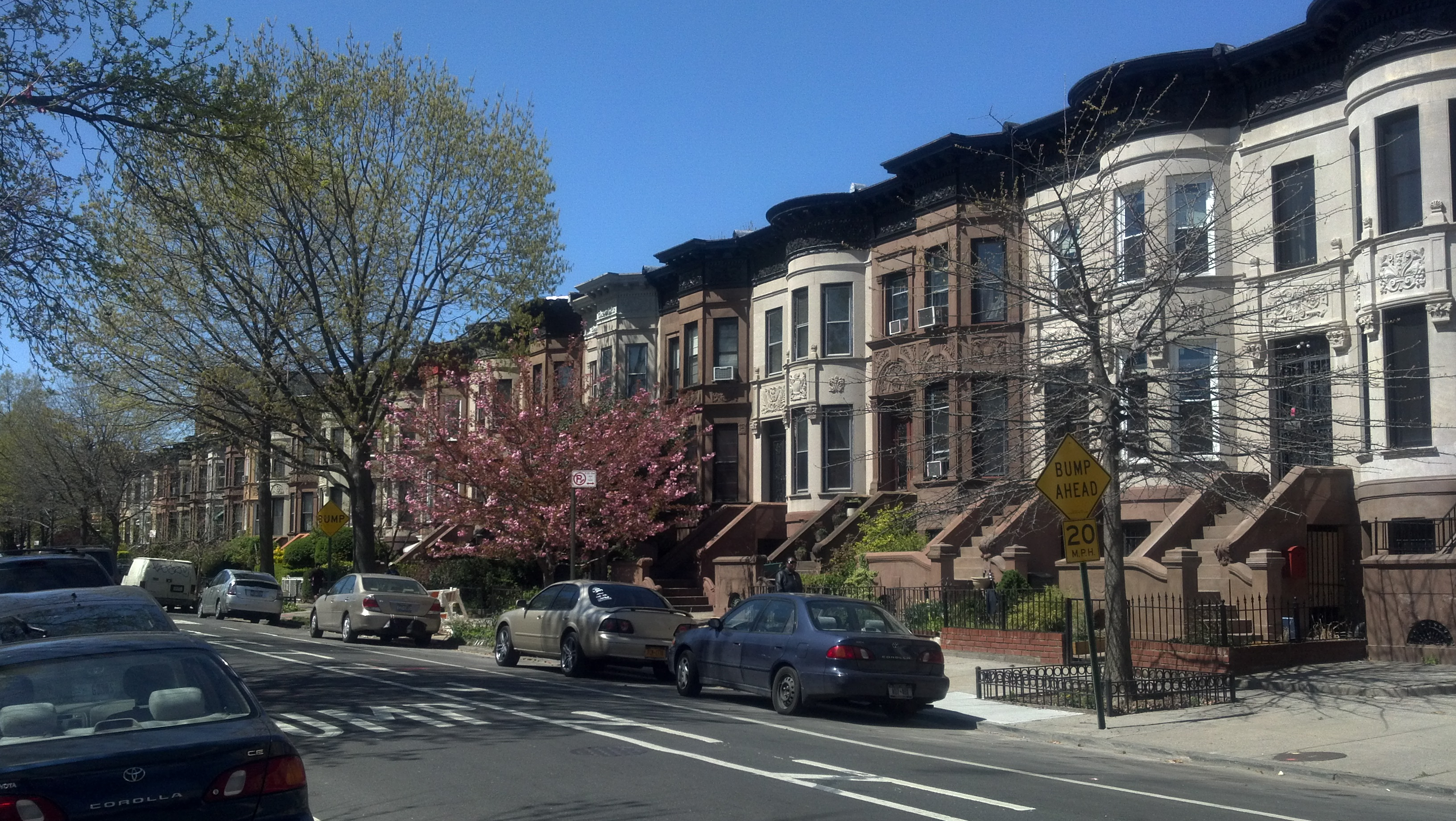 Prospect Lefferts Gardens Where I Grew Up See What Eye See